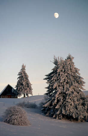 Snow covered trees and chalet at dusk with the moon in Revard, France photo