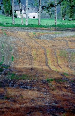 poplars: Traditionnal Savoyard stone house  dauphinois  with poplars and orange field againt mountain background Stock Photo