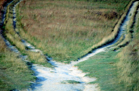 splitting up: Footpath in field splitting into two  Which way choose   right or left    Stock Photo