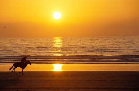 Silhouette of a galloping horse and rider at sunset on the sand beach, with sun reflecting on sea