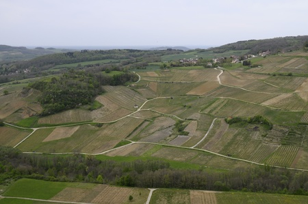 jura: Overview of well-known Vineyards of Chateau-chalon in France Stock Photo