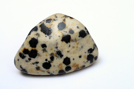 Close up of mineral : Dalmatian jasper stone