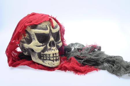 hallowen: Halloween white and black skull on light background Stock Photo