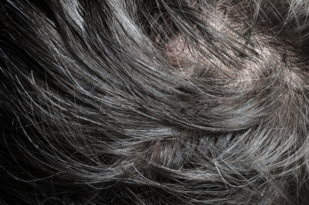 black hairs: Macro of black hairs of mature man