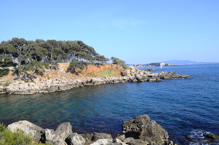 pine creek: Vertical landscape of Sea and coast in Bandol, French riviera, France
