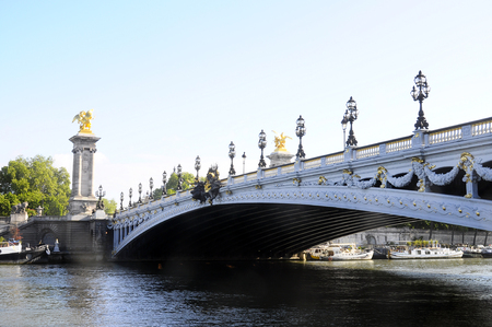 alexandre: Bridge Alexandre III in Paris and its decorations light Stock Photo