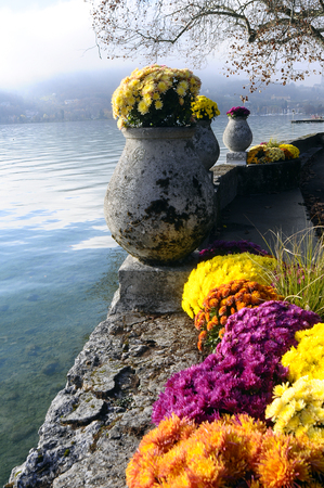 Flowers on Annecy lake border side in France