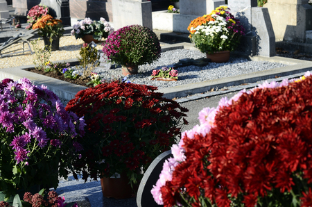 Ornate cemetery with multicolor flowers at Toussaint day, France Banque d'images