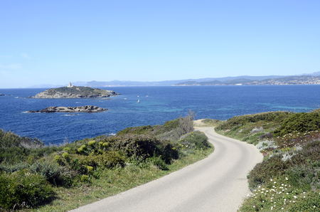 toulon: Embiez island landscape, near Bandol, french riviera and mediterranean sea, France