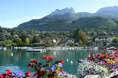 Annecy lake and Talloires village and marina, with flowers on foreground, Savoy