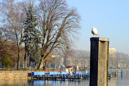 Annecy lake and city on winter morning 版權商用圖片