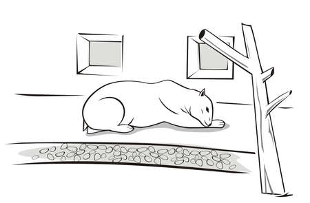 Vector illustration of a sad, polar bear in the zoo. Illustration