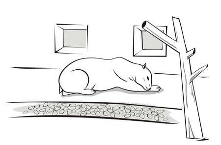 Vector illustration of a sad, polar bear in the zoo. Illustration