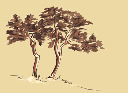 Trees Sketch
