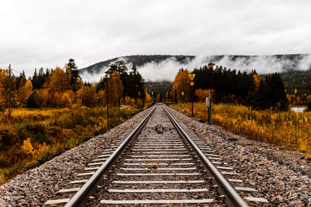 Railroad tracks or railway leads straight into nowhere - low angle shot - autumn forest and fog in the background - concept of determination, transport, the future and hope - great depth of field