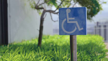 Disability parking, street post sign for reserved parking sign outside on a sunny day with green foliage and blue sky. Handicapped sign, detail of an information signal, disabled