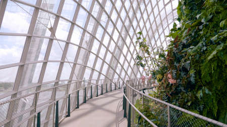 Singapore - January 11, 2020 : Cloud Forest Dome at Gardens by the Bay on January 11, 2020 in Singapore. Spanning 101 hectares of reclaimed land in central Singapore, adjacent to Marina Reservoir.
