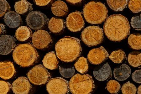 Holzbearbeitung in einer Schreinerei auf schneebedeckten Berg Standard-Bild