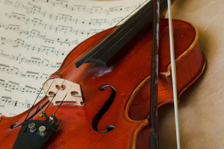 Old Violin photo