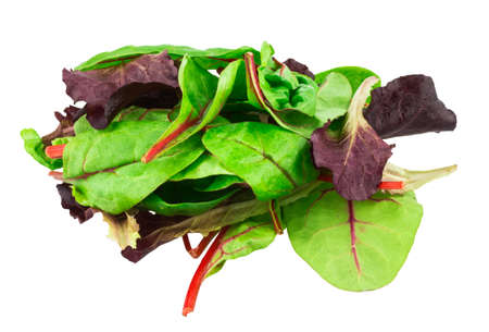 Mixed salad baby red leaf, baby spinach & red chard isolated on white photo