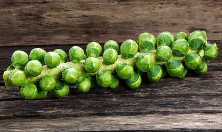 Sprouts on the stalk. on wooden table.