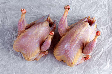 Ready to cook raw seasoned partridges on crumpled paper Stockfoto