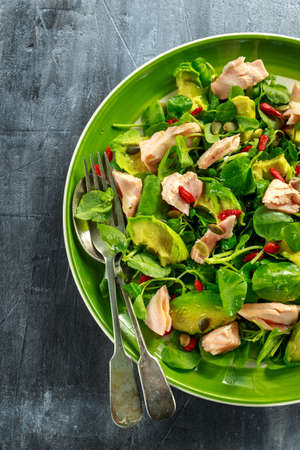 berro: Healthy Salmon, Avocado salad with watercress and goji berries, pumpkin seed mix on green plate.