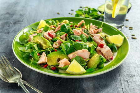 Healthy Salmon, Avocado salad with watercress and goji berries, pumpkin seed mix on green plate