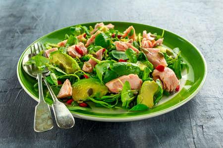 berro: Healthy Salmon, Avocado salad with watercress and goji berries, pumpkin seed mix on green plate