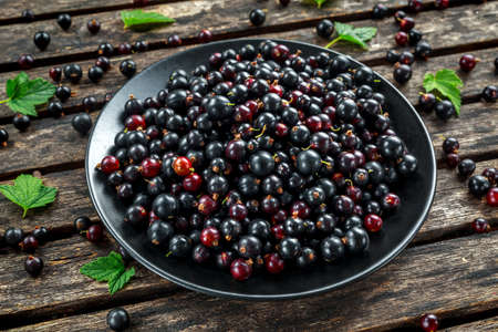 Fresh Juicy black currants in a plate on wooden rustic table