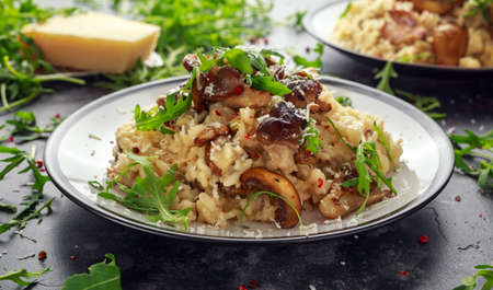 Italian Mushroom risotto with parmesan cheese and wild rocket on top.