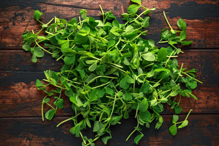 Sweet raw Green Pea Shoots on rustic wooden background Stock Photo