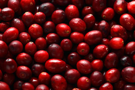 Fresh tasty Cranberry background, texture. close up. selected focus.