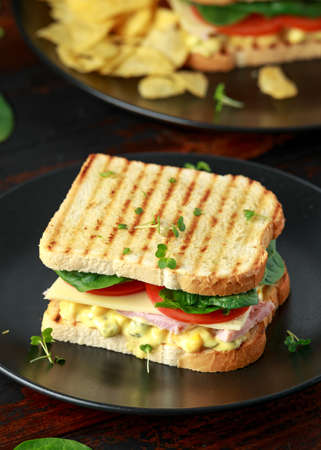 Sandwich with ham, cheese, tomatoes, spinach, corn, mayonnaise, mustard, gherkins, toasted bread and potato chips. Stock fotó
