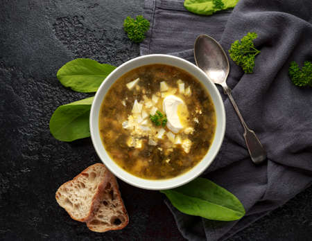 Traditional russian Sorrel soup with sour cream and hard boiled egg. Stockfoto
