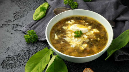 Traditional russian Sorrel soup with sour cream and hard boiled egg. 版權商用圖片
