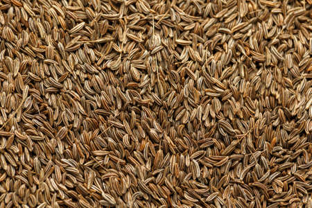 Caraway, meridian fennel or Persian cumin seeds as background