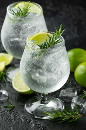 Gin and Tonic Alcohol drink with Lime, Rosemary and ice on rustic black table Archivio Fotografico