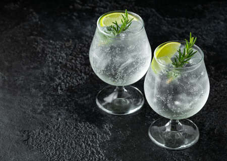 Gin and Tonic Alcohol drink with Lime, Rosemary and ice on rustic black table 写真素材