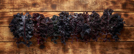 Fresh Red kale on rustic wooden table 스톡 콘텐츠