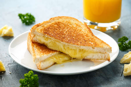 Grilled Cheese cheddar Sandwich on white plate.