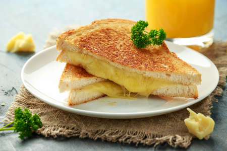 Grilled Cheese cheddar Sandwich on white plate. 스톡 콘텐츠