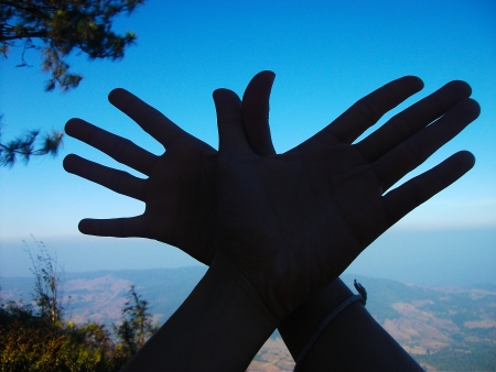 The view from the top of Phurua Peak,Phu Ruea National Park through hands bird photo