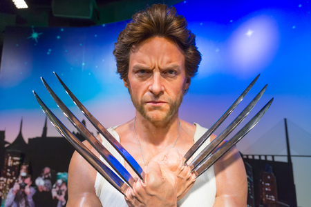 the celebrities: Bangkok, Thailand - October 26, 2014 : A waxwork of Wolverine on display at Madame Tussauds. Madame Tussauds newest branch hosts waxworks of numerous stars and celebrities