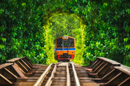 Train running in tree tunnel on the railway in Bangkok Thailand. focus at train Stock Photo
