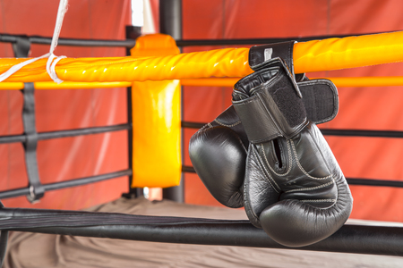 Black boxing gloves hang on hanging on ropes of ring. Stock Photo