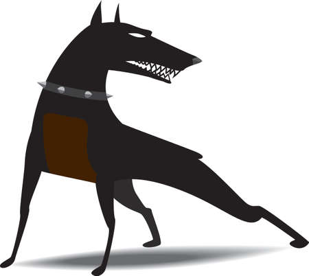 doberman: Hund Halsband mit Spikes dr�hnenden, bereit zum Angriff auf das tragen