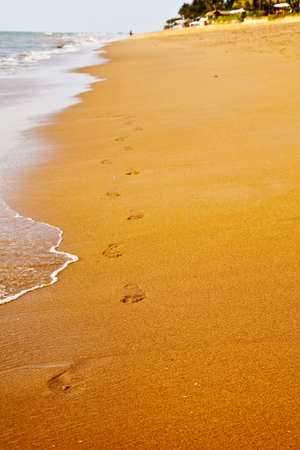 Footprints walking along the beach Imagens