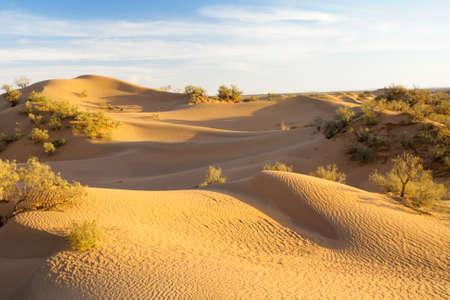 Sandunes in the Desert of Morocco Imagens