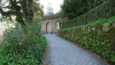Walking Around Amazing Quinta Da Regaleira Garden, Portugal.